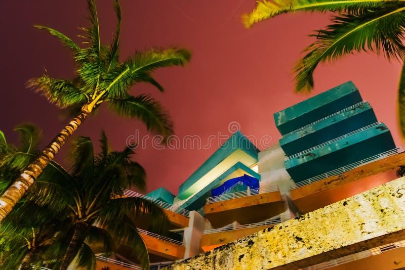 Palmiers en plage du sud sous un ciel coloré la nuit photo stock