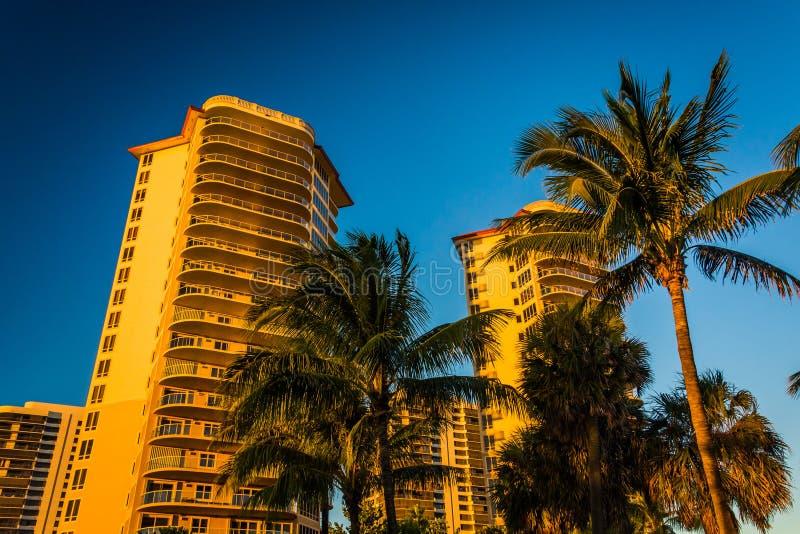 Palmiers et tours de logement dans le chanteur Island, la Floride image libre de droits
