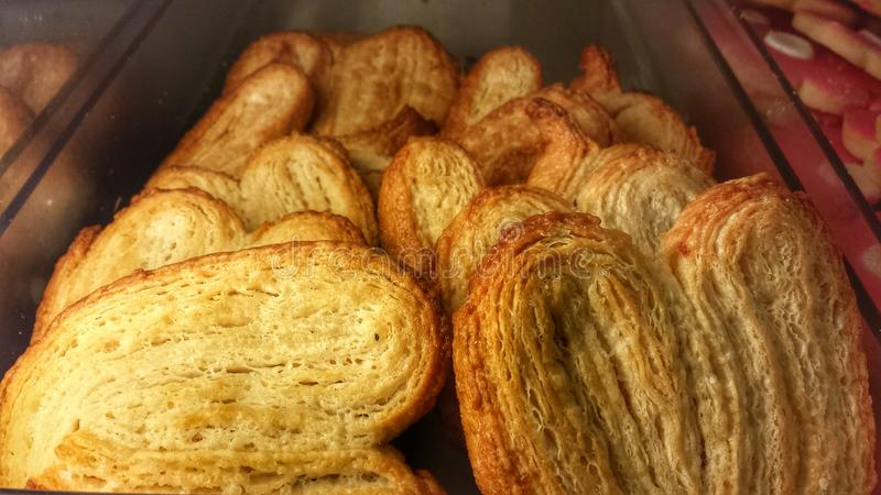 Palmiers royalty free stock images