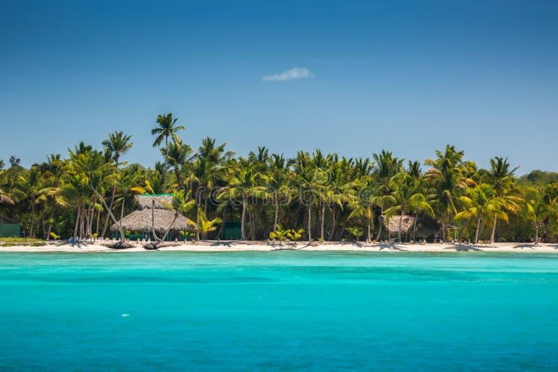Palmiers sur la plage tropicale, République Dominicaine  image libre de droits