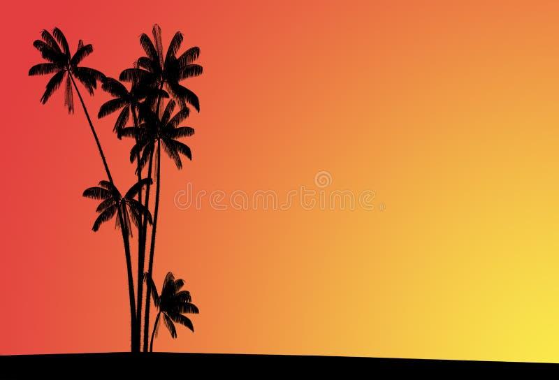 Palmiers sur un coucher du soleil illustration stock