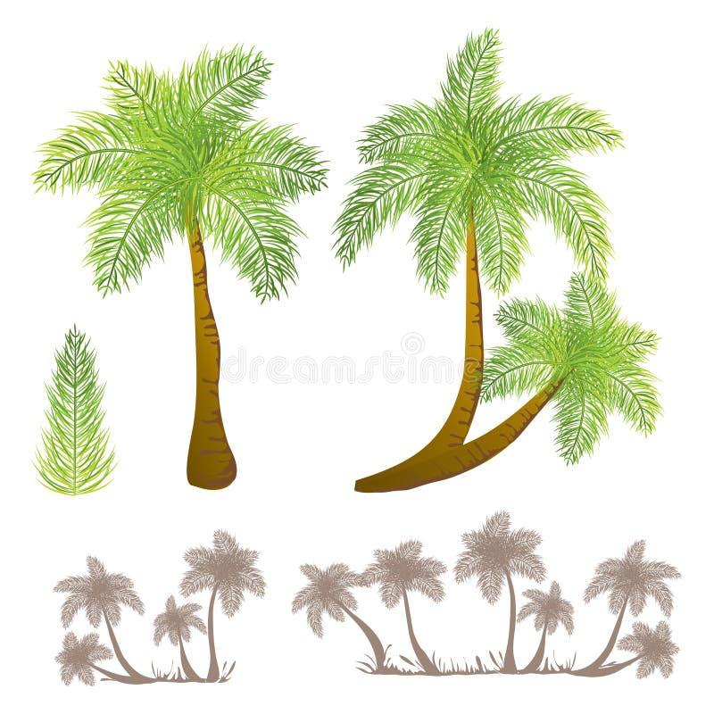 Palmiers tropicaux illustration libre de droits