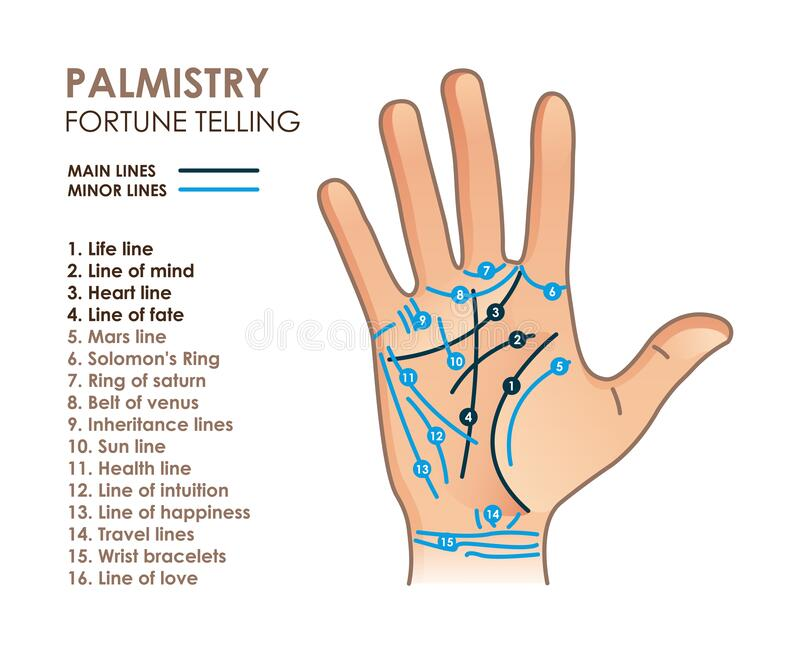 Palmistry Stock Illustrations – 828 Palmistry Stock Illustrations, Vectors & Clipart - Dreamstime