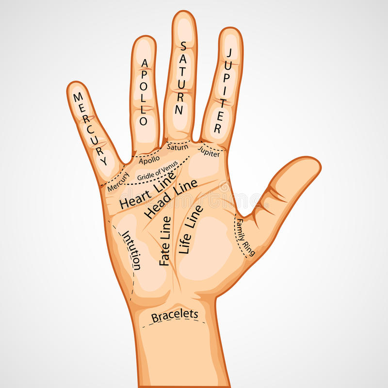 Palmistry Map stock illustration