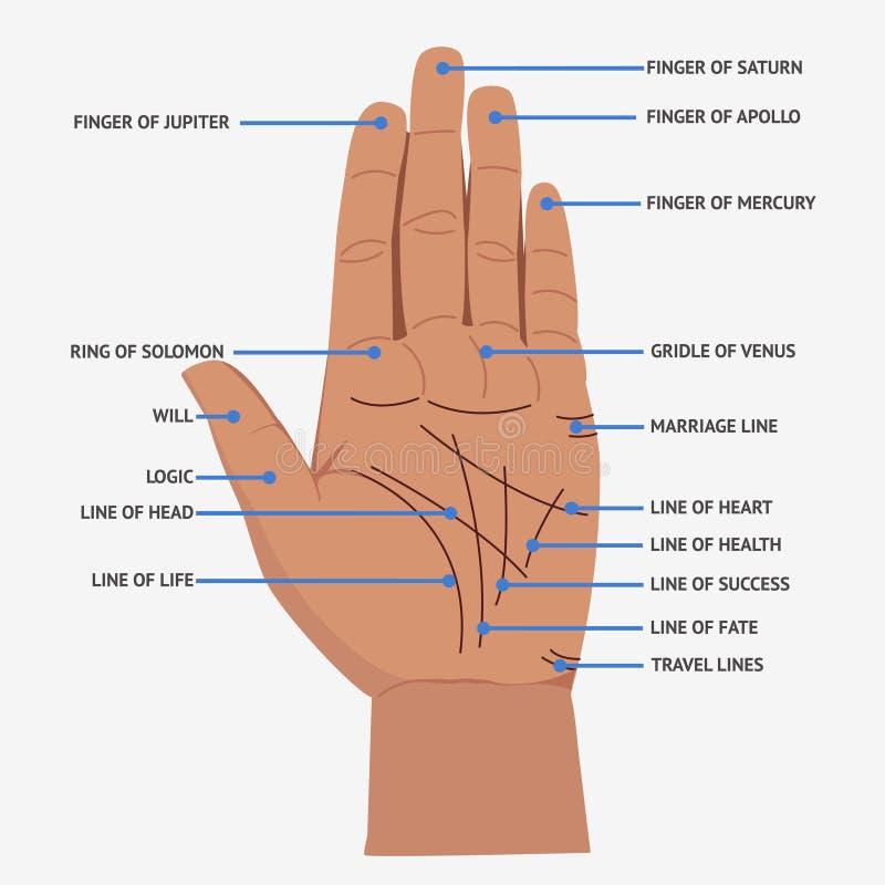 palmistry Open van handlijnen en symbolen mystieke lezingsillustratie stock illustratie