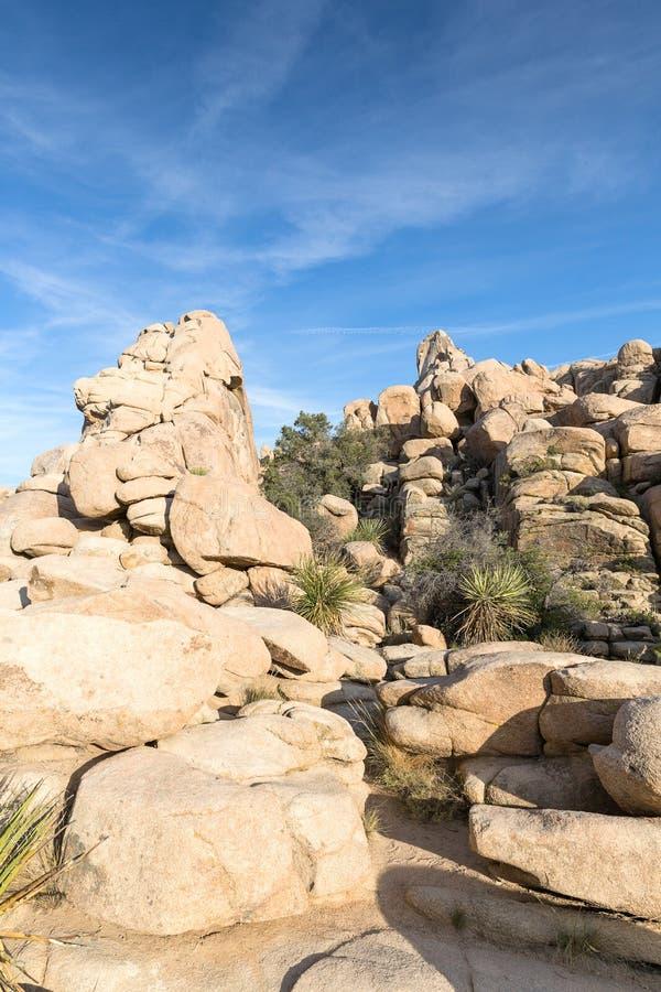 Palmliljan gömma i handflatan och vaggar bildande i Joshua Tree National Park, Cal royaltyfri foto
