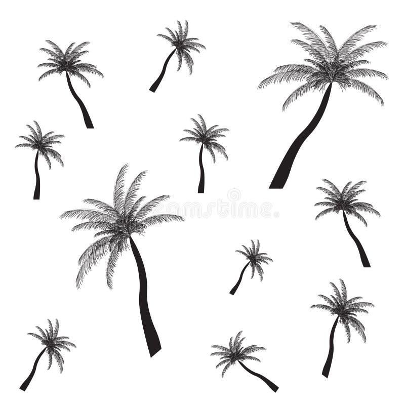 Palmowa sylwetka. Wektorowa ilustracja. EPS 10. ilustracji
