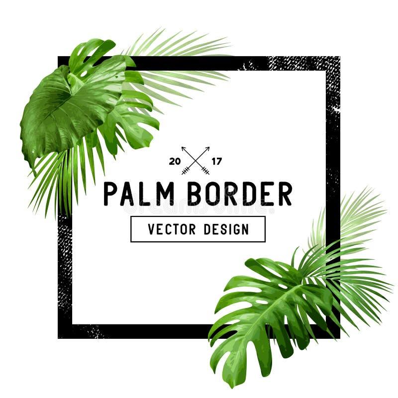Palmowego liścia rama ilustracja wektor