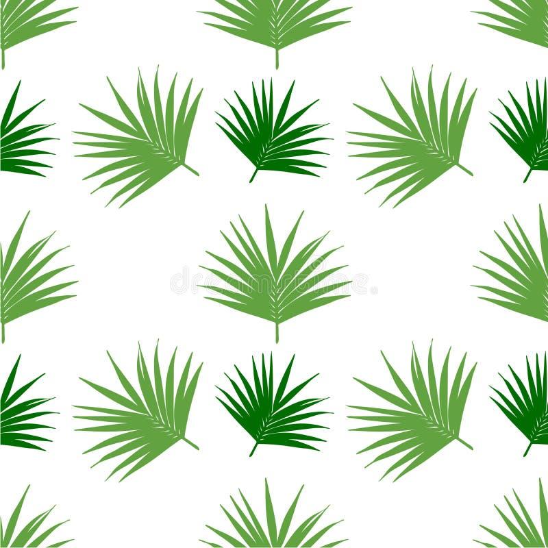 Palmowego liścia wzoru tła bezszwowa wektorowa płytka, gałąź kokosowy drzewo również zwrócić corel ilustracji wektora royalty ilustracja