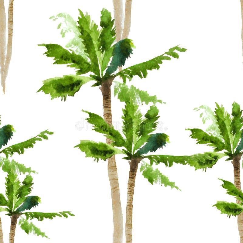 Palmowej akwareli bezszwowy wzór ilustracja wektor