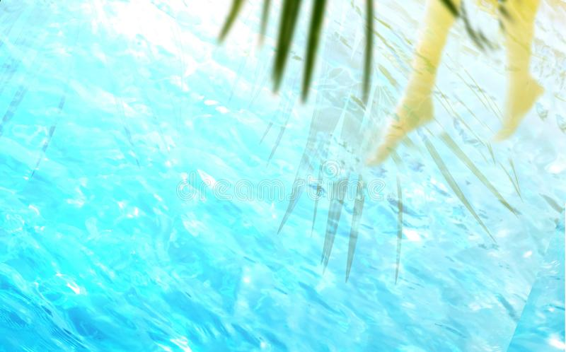Palmowy liść ocienia sylwetki w błękitnej przejrzystej wodzie i iść na piechotę obraz royalty free