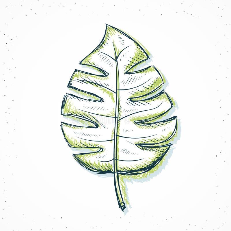 palmowy liść handmade w nakreślenie stylu royalty ilustracja