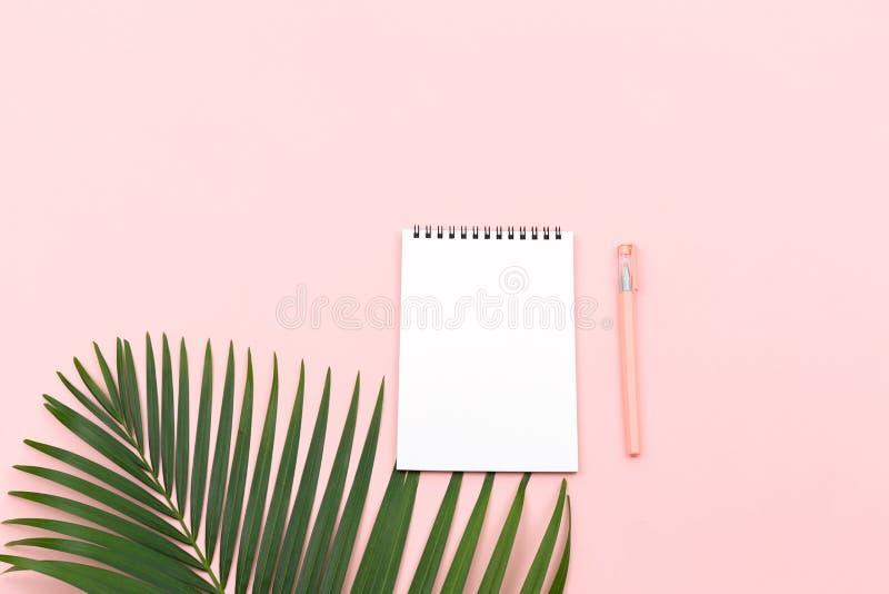 Palmowy liść, notepad i pióro, fotografia royalty free