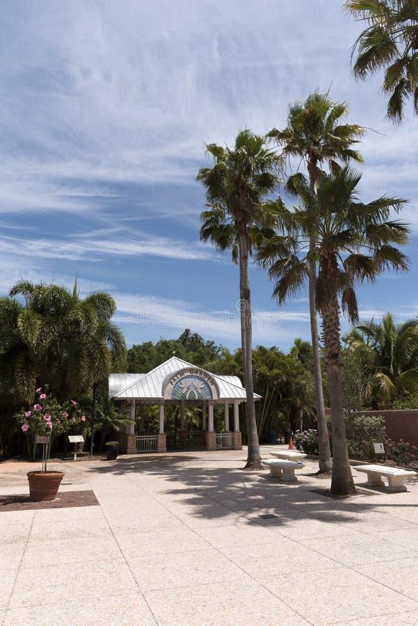 Palmowy ogród przy Floryda ogródu botanicznego usa obrazy stock