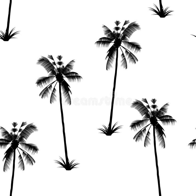 Palmowy wzór Egzotyczny drzewo tropikalny zachwyt royalty ilustracja