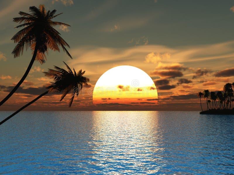 Palms. Sunset coconut palm trees on ocean beach - 3d illustration royalty free illustration