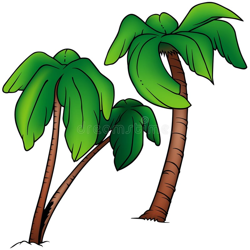 Download Palms stock vector. Image of vector, palms, cartoons, nature - 5528914