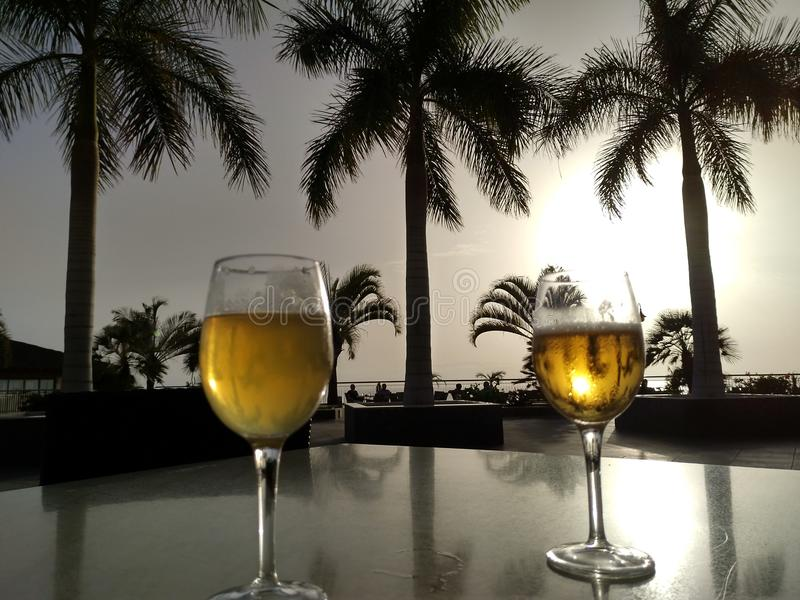 Palms and beer royalty free stock photos