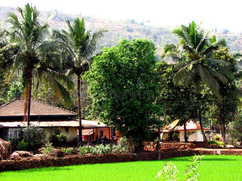 Download Palms Cottage Stock Photography - Image: 2031932