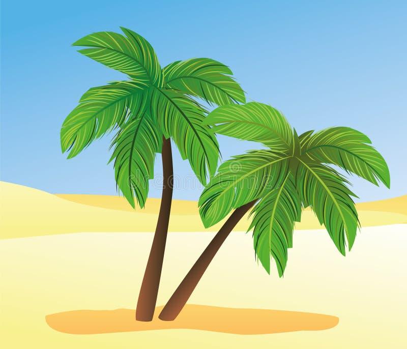 Palms and desert
