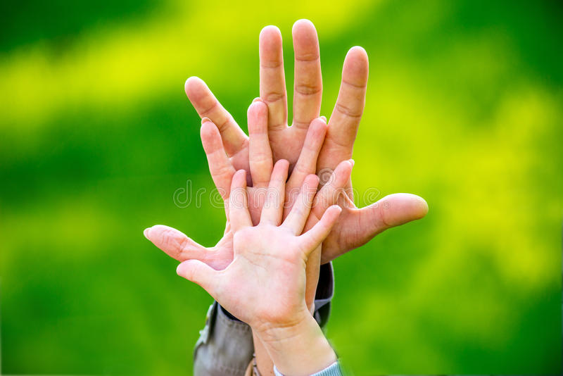 The palms of the family. Father, mother and child. stock image