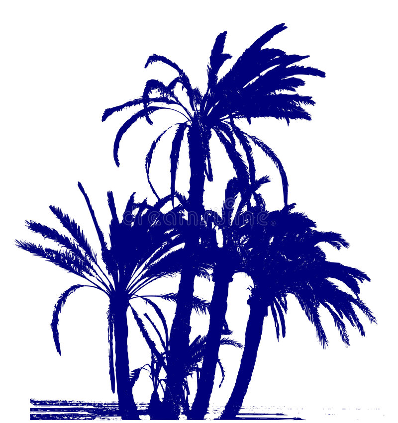 Palms group / vector vector illustration
