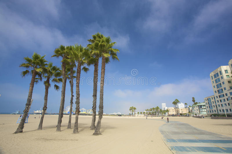 Palms and the pier at Santa monica beach in LA royalty free stock photos