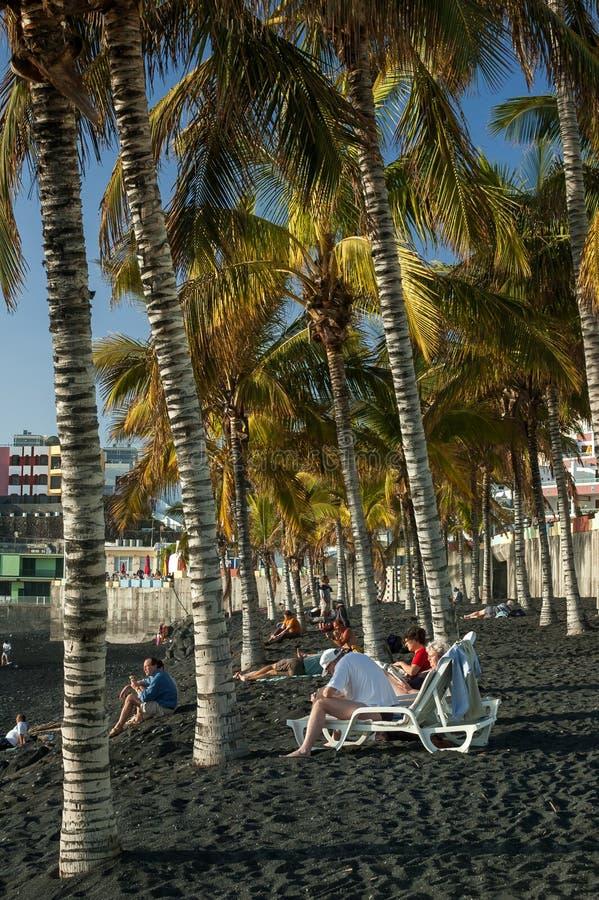 Palms on Puerto Naos beach, La Palma