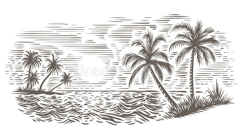 Palms and sea engraving style illustration. Vector, isolated. royalty free illustration
