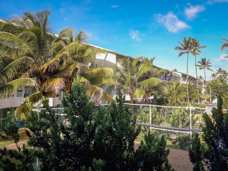 Palms and trees in Flat Resort of Brazil royalty free stock photos