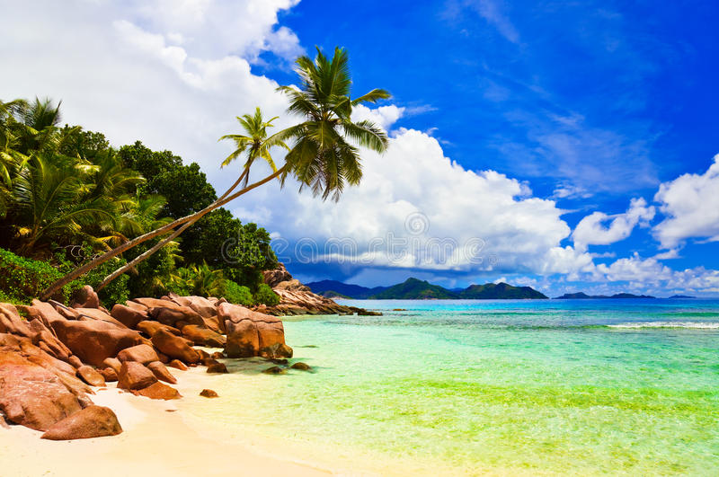 Download Palms On Tropical Beach Stock Photo - Image: 27525030