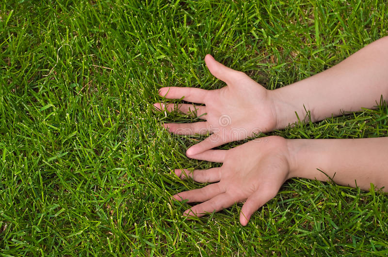 Download Palms up stock image. Image of girl, hands, copy, earth - 10539911