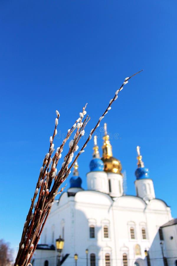 Palmsonntag in Sibirien lizenzfreie stockfotos