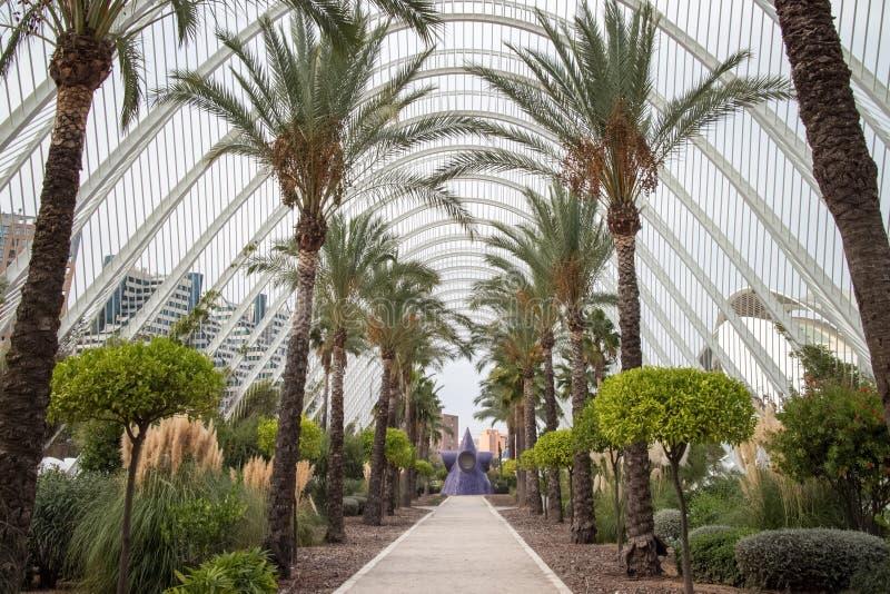 Palmsteeg in de Stad van Kunsten en Wetenschappen stock foto