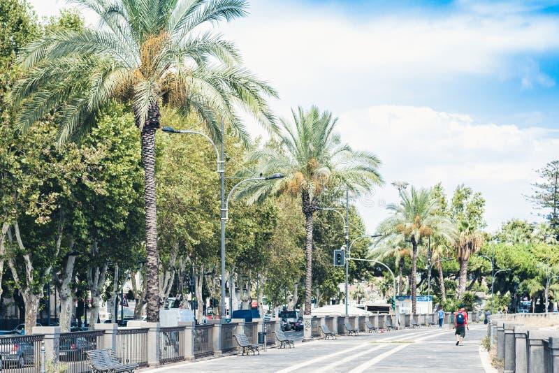 Palmsteeg met metaalbanken in Catanië, Sicilië, Zuidelijk Italië stock afbeeldingen