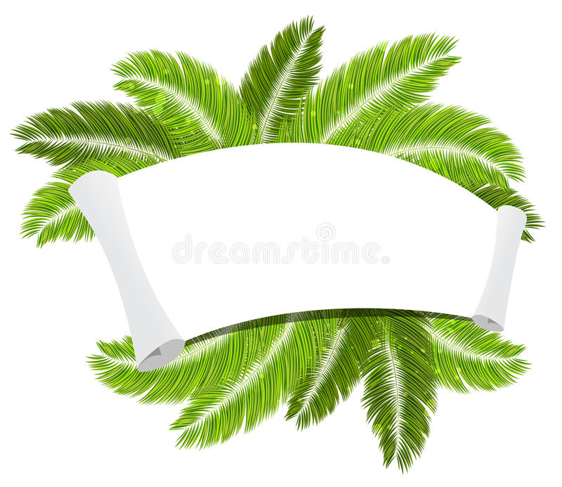 Palmtakken en document rol stock illustratie