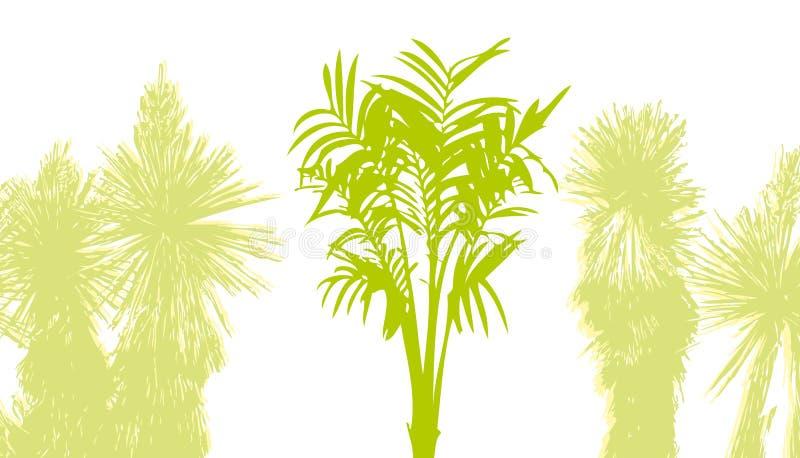 Download Palmträd stock illustrationer. Illustration av bild, orientaliskt - 518715
