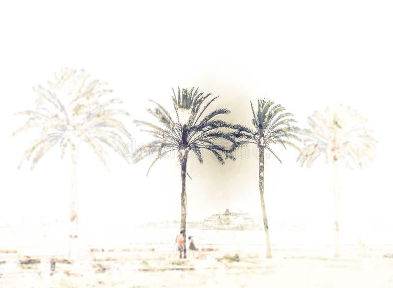 Palmträd längs kusten i Palma de Mallorca royaltyfri illustrationer