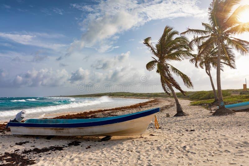 Palmträd och fisherfartyg på Playaen Publica sätter på land på den Cozumel ön royaltyfri foto