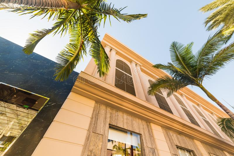 Palmträd och lyxbyggnader i rodeodrev royaltyfri foto