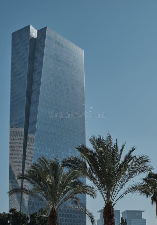 Palmträd och moderna byggnader i Tel Aviv, ISRAEL arkivbilder