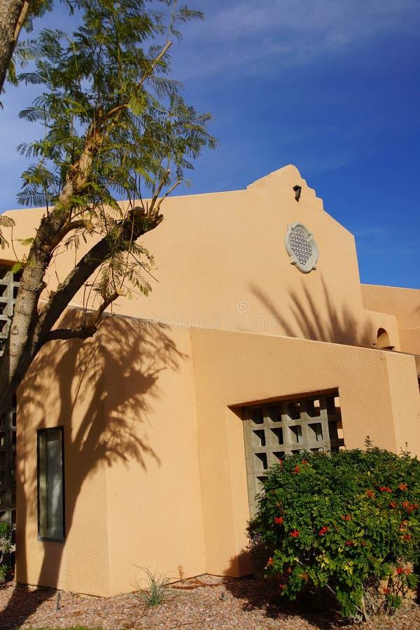 Palmträd och sydvästlig arkitektur royaltyfria bilder