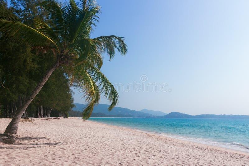Palmträd på den tropiska stranden för paradis på seascapen och bergbakgrunden exotisk ? Fantastiskt lopp fotografering för bildbyråer