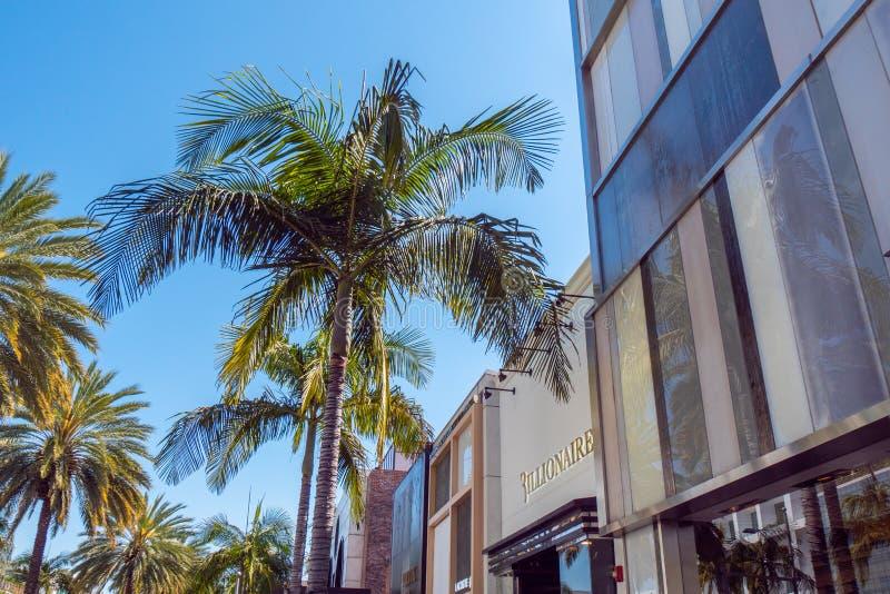 Palmträd på Rodeo Drive i Beverly Hills - KALIFORNIEN, USA - MARS 18, 2019 arkivfoton