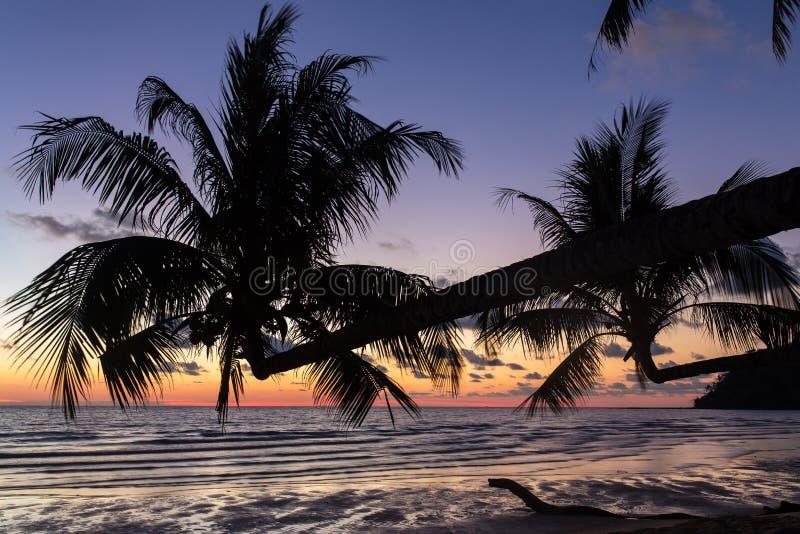 Palmträd under solnedgång på en härlig tropisk strand på den Koh Kood ön royaltyfri foto