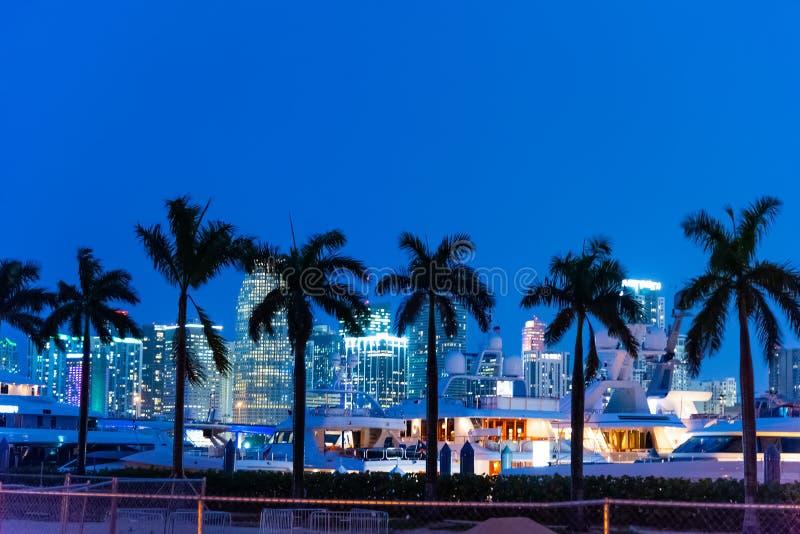 Palmträd, yachter och skyskrapor i Miami på natten arkivbild