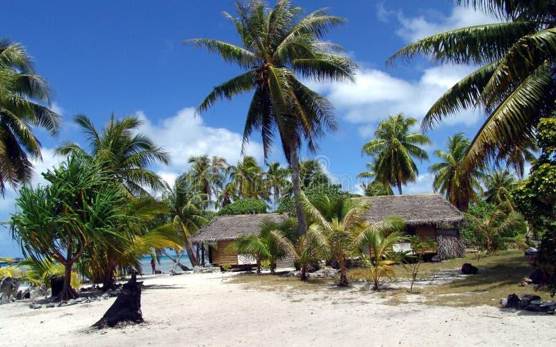 Palmträdhav och sand royaltyfria foton