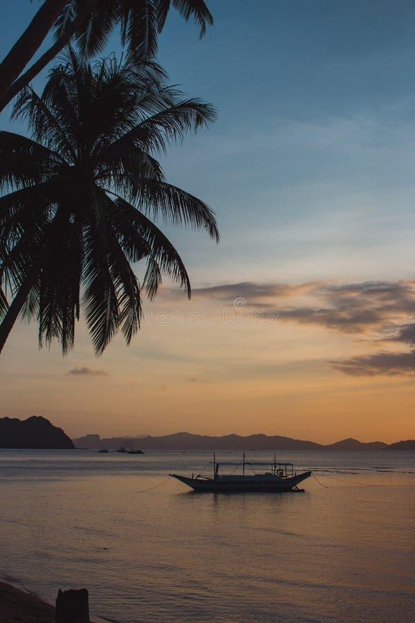 Palmträdkonturer och fartyg på solnedgånghimmelbakgrund r arkivfoton