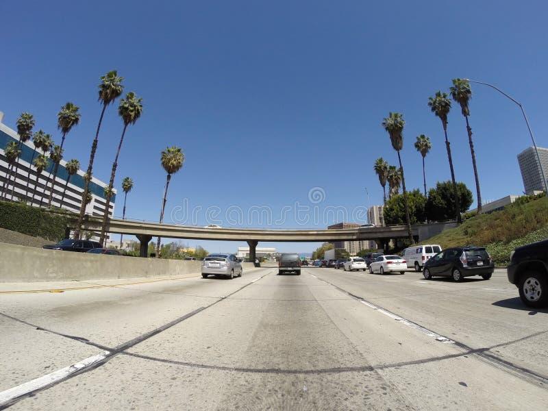 Palmträdmotorväg arkivfoto