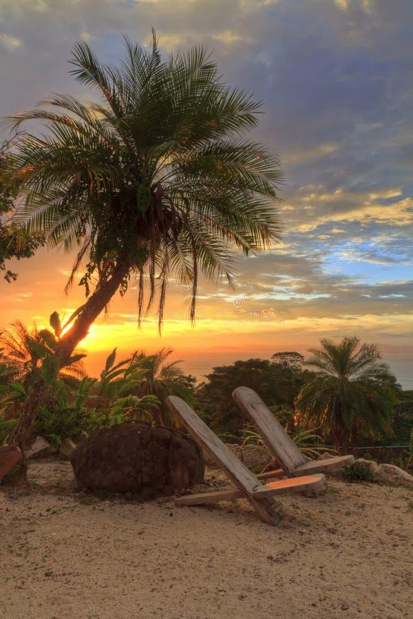Palmträdsolnedgång HDR royaltyfri fotografi